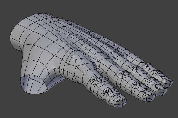 Modeling hand and thumb topology.