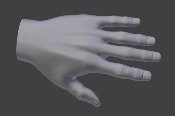 3D hand model by Peter Strobos.
