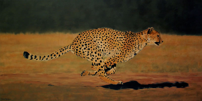 Cheeta In Action Oil On Canvas Painting Of A Cheeta Running