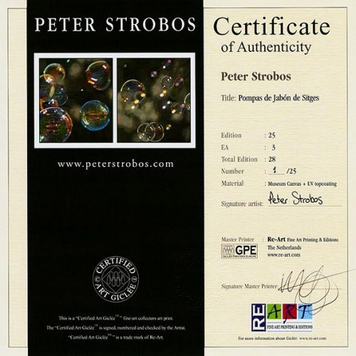 Certificate of authenticity for Peter Strobos Certified Art Giclee.