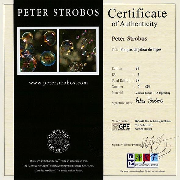 Certified Artist: Certified Art Giclée™