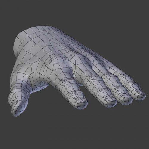 Mesh modeling hand topology.